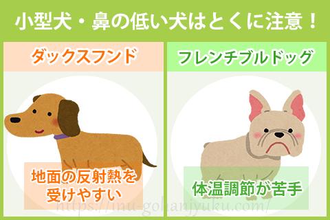 小型犬・鼻の低い犬はとくに注意!