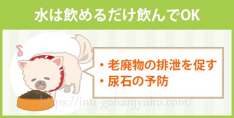 【ポイント②】水分をたっぷり摂取させる