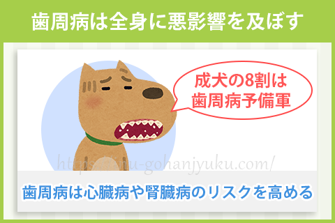 【ポイント④】歯のケアを怠らない