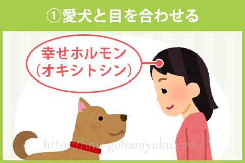 「幸せホルモン」でストレス軽減!