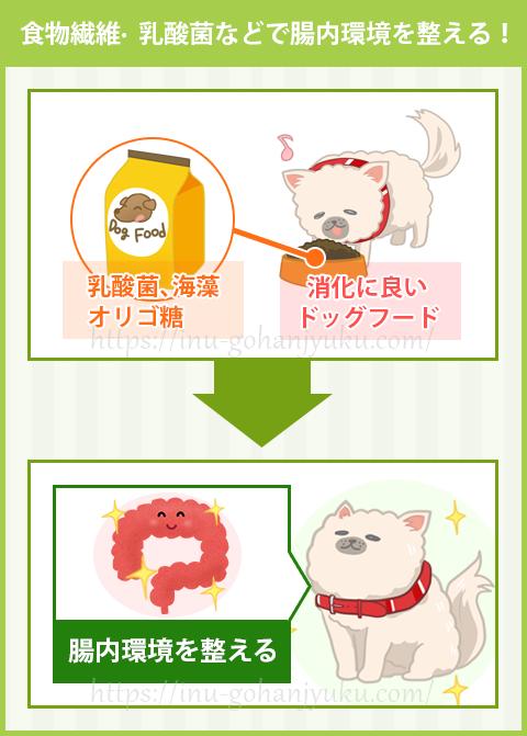 腸内環境を整える食材(食物繊維・乳酸菌・オリゴ糖など)配合