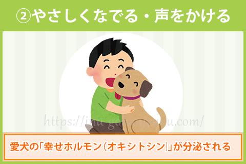 愛犬と目を合わせたら、そのままやさしくなでたり声をかけてあげましょう。