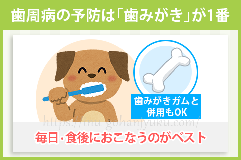 歯周病を予防する1番の方法は歯みがき。