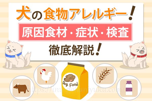 【犬の食物アレルギー】犬に多い原因食材・症状・検査を徹底解説!