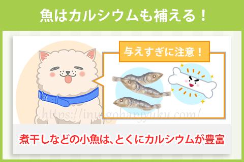 魚は骨や歯を強くするカルシウムも補える!
