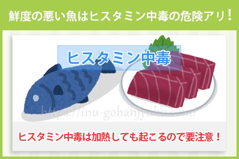 鮮度の落ちた魚のヒスタミン中毒に注意!
