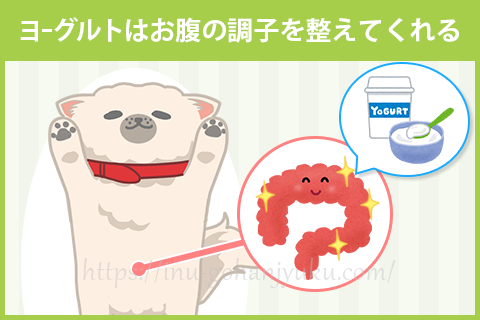 【効果1】乳酸菌などの善玉菌が、腸内環境を整える!