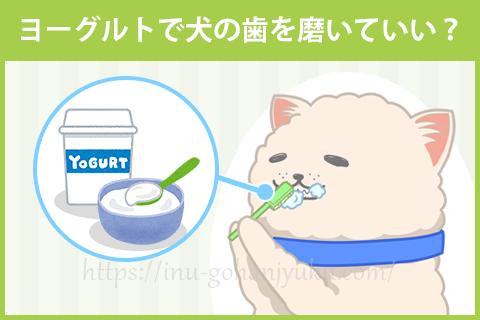 ヨーグルト歯磨きの効果は?