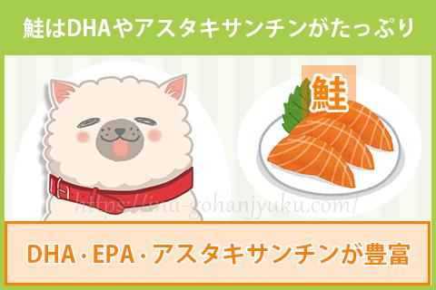 鮭・サーモンは抗酸化成分のアスタキサンチンが豊富!