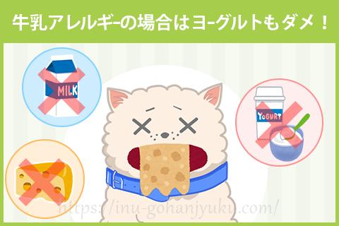【注意1】牛乳アレルギーの犬には食べさせない