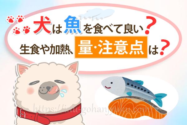 犬に魚をあげて良い?マグロや鮭は生食もOK?量・注意点・レシピは?