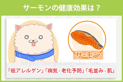 サーモン(鮭)の健康効果