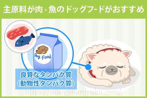 【ポイント1】肉・魚メインのドッグフードで筋肉を維持!