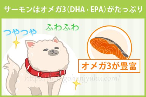 【効果2】サーモンはオメガ3(DHA・EPA)がたっぷり