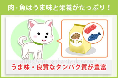 【ポイント1】肉・魚がメインのドッグフードを選ぶ