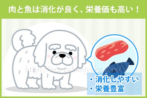 【ポイント1】肉・魚は消化しやすく栄養満点!