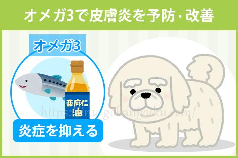 【ポイント2】抗炎症作用のオメガ3で皮膚炎を予防