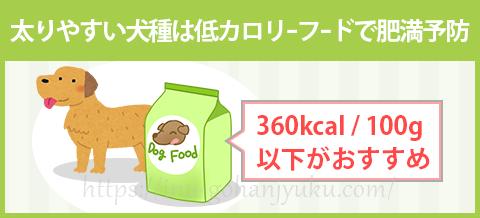 【ポイント3】低カロリーのドッグフードで肥満予防!