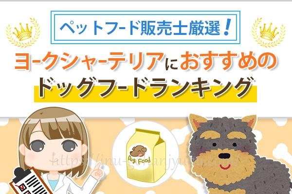 【ペットフード販売士厳選】ヨークシャーテリアに人気の餌!安全ドッグフードランキング