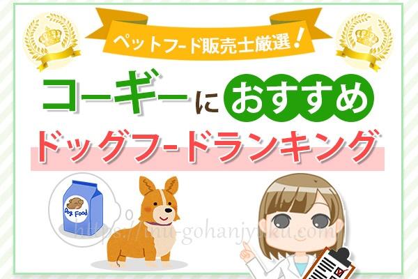【ペットフード販売士厳選】コーギーにおすすめの餌!安全ドッグフードランキング
