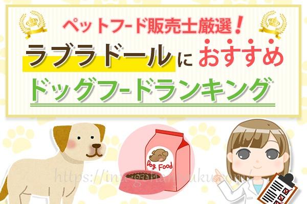 【ペットフード販売士厳選】ラブラドールレトリバーにおすすめの餌!安全ドッグフードランキング